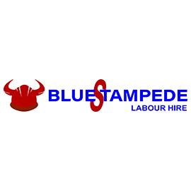 Blue Stampede Labour Hire