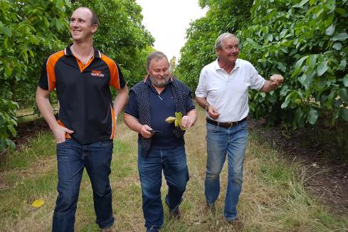Horticulture thrives on  new markets, investment