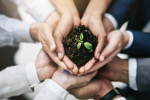 Green tips to introduce CSR to your organisation