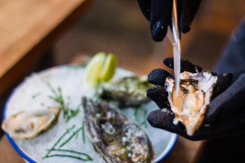 Harvest Road adds Albany oysters to expanding menu