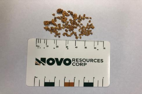 Excellent ore sorting results for Novo on Pilbara gold