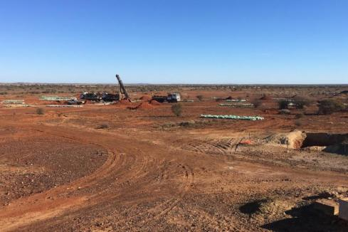 Musgrave shares surge on drill results