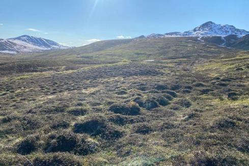 Drilling imminent at PolarX US copper-gold play