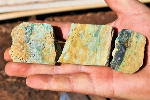 Victory picks up 26 per cent copper sample at Kimberley project