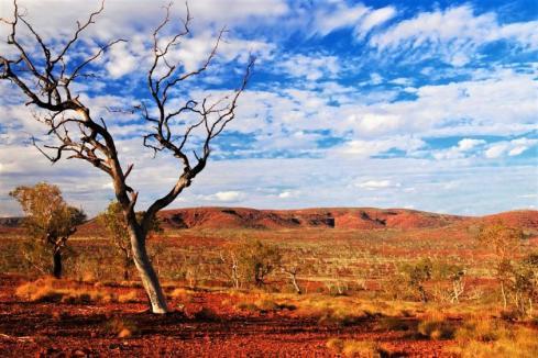 Caeneus nails down Pilbara drill targets