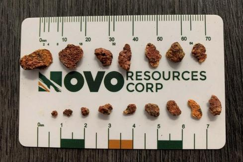 Novo's processing technology captures nuggety gold