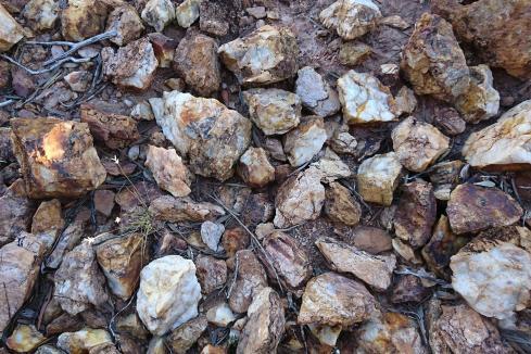 Terrain adds high-grade WA gold ground to Smokebush