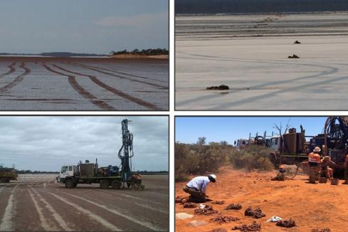 Kingwest onto stellar gold hits under Goldfields' salt-lake