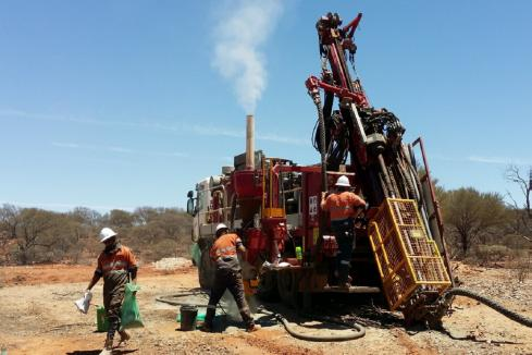 White Cliff ramps up gold exploration at Reedy South
