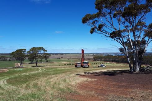 Impact steps up WA nickel-gold hunt