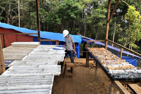 Sihayo drill tests high-grade gold vein in Indonesia