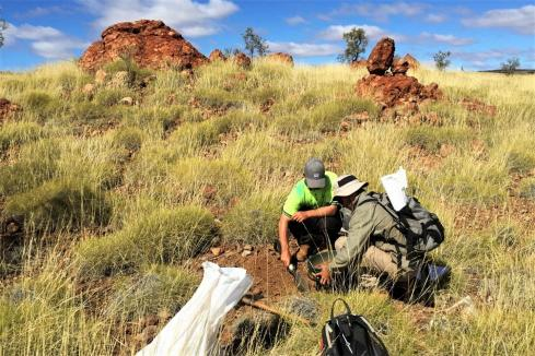 Kairos adds to intrusive-style drill targets in Pilbara
