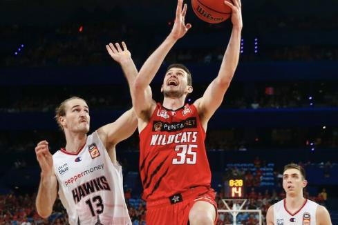 Perth Wildcats in potential sale
