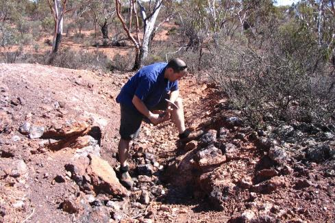 White Cliff chalks up more Reedy South gold targets