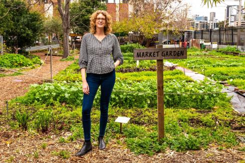 Room to grow for social enterprises