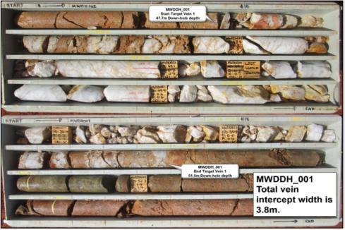 Native Minerals extends high-grade WA gold target at depth