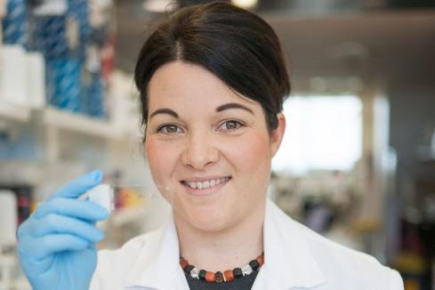 Handful of WA medical researchers awarded funding