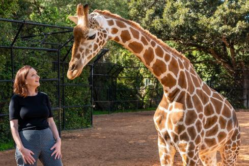 Memories to preserve, animals to conserve