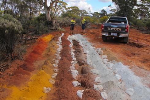 Metal Hawk grows WA nickel sulphide discovery