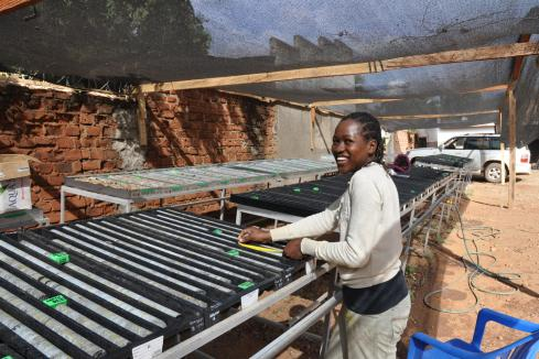 Sipa provides more downhole intrigue in Uganda
