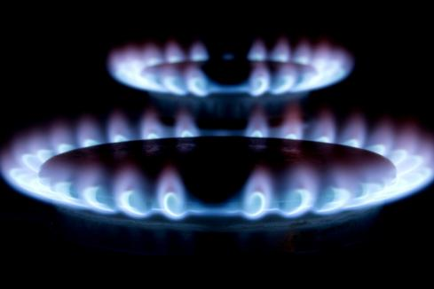 Long-term potential for biogas, hydrogen as domgas