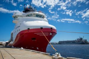 Gas demand a blue sky opportunity for Woodside