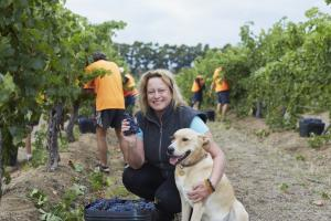 Chinese taste for WA wines leads Asian sales push