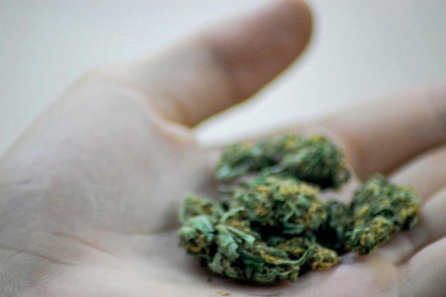 Medical Marijuana company achieves material revenue flow