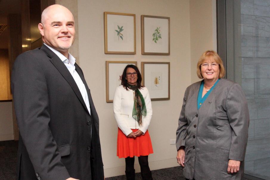 Diabetes Research WA names new board members