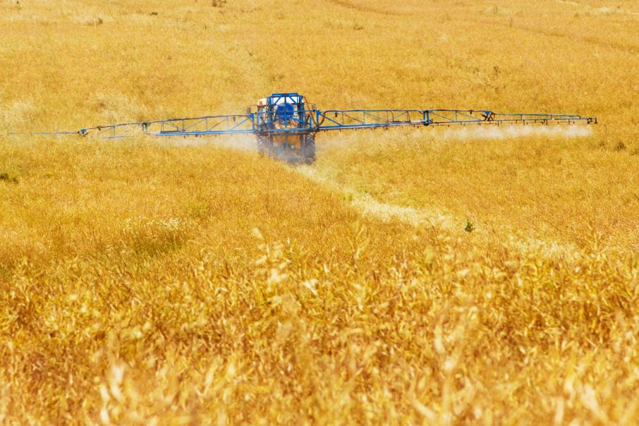 Crop production forecast up 12%