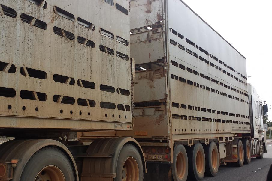 Govt suspends second live export licence
