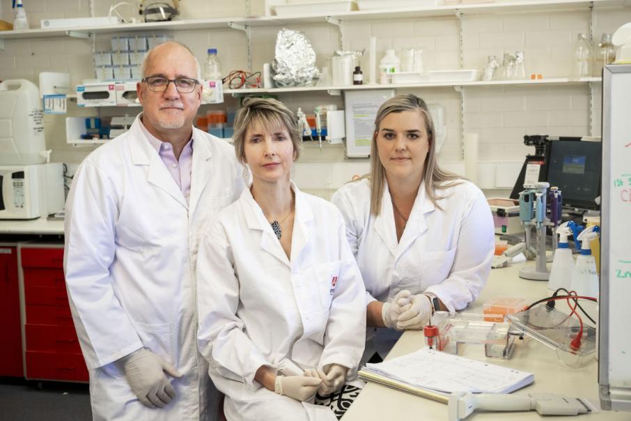 Murdoch team heads tick bite disease link