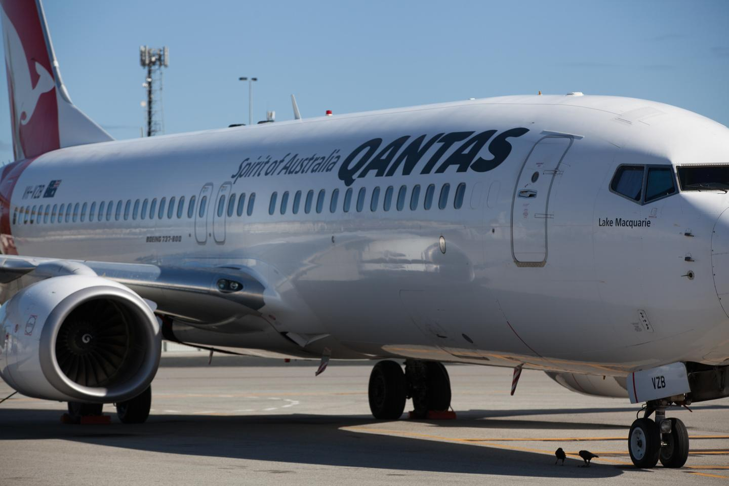 Qantas may move head offices to cut costs