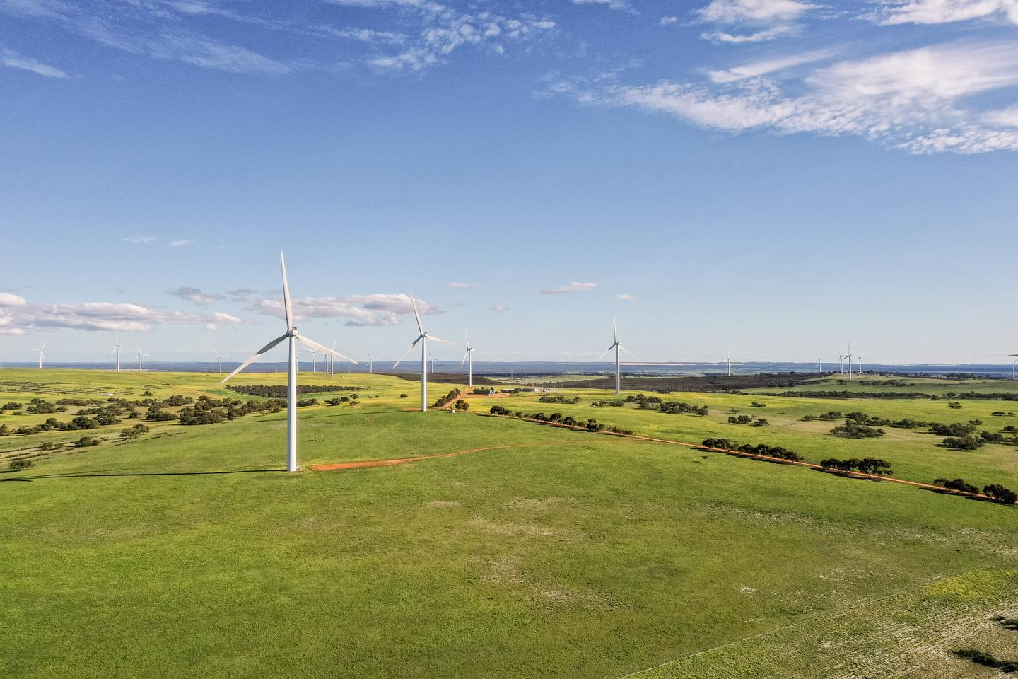 Wind farm slugged $1m over blackout issues