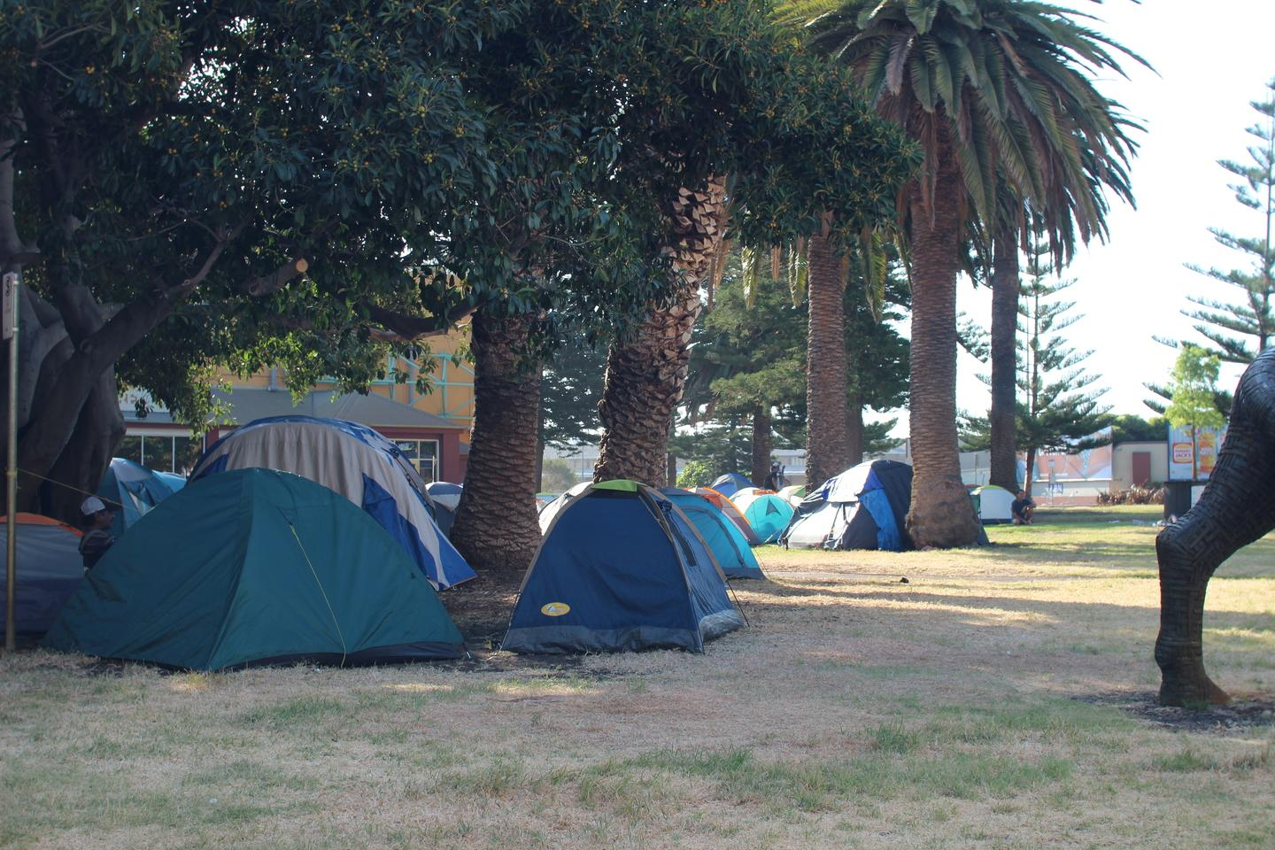 State 'hamstrung' over tent city: McGowan